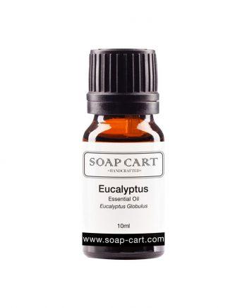 eucalyptus bluegum-10ml