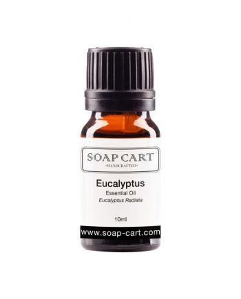 eucalyptus radiata-10ml