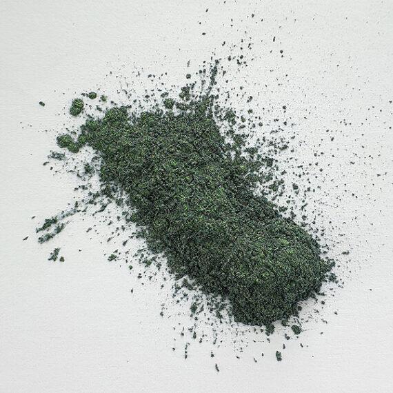 Jungle Green Mica03